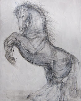 horse-charcoal-sketch