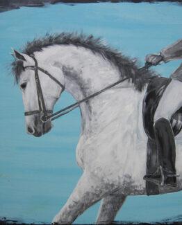 horse-white-blue-border