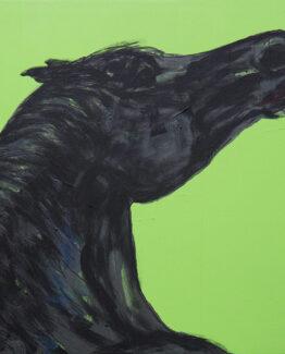 horse-square-green-black